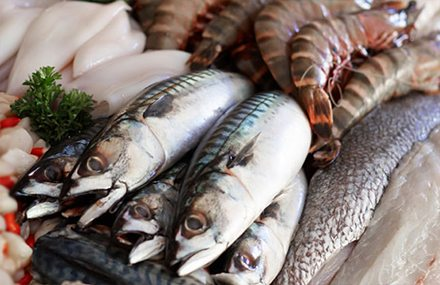 Ghana's Seafood Industry in a Steady Growth - Visap - GEPA Exporters