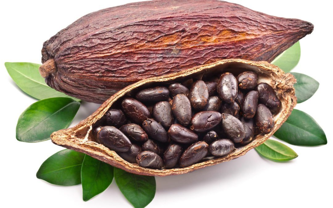 COCOBOD ensures Ghanaian cocoa products meet quality requirements