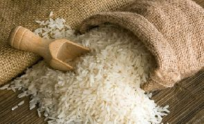 GSA, FDA to facilitate standardization, registration of local rice